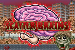 Scatter Brains